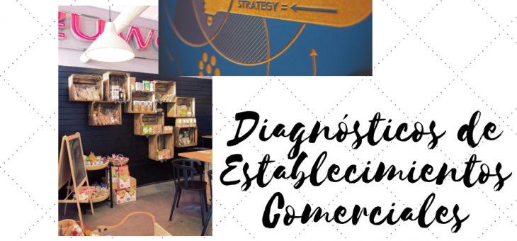DIAGNÓSTICOS DE ESTABLECIMIENTOS COMERCIALES