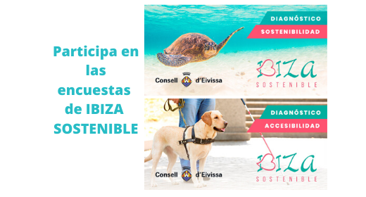 DIAGNÓSTICOS IBIZA SOSTENIBLE
